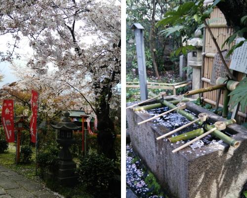 伏見稲荷image7