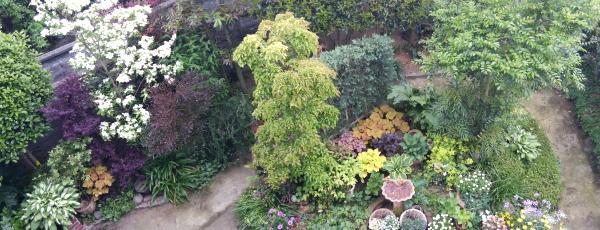 庭image1